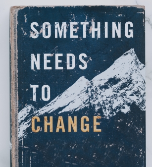 "Book cover with blue skies and white mountains, with words ""Something needs to change."""